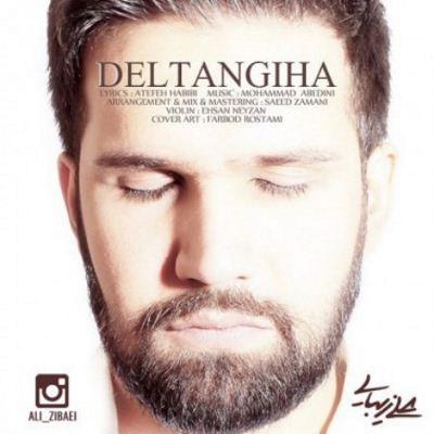 Ali Zibaii-Deltangiha