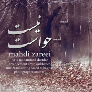 Mahdi Zareei - Havaset Nist