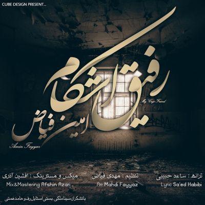 Amin Fayyaz-Rafighe Ashkam