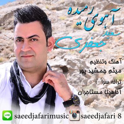 Saeed-Jafari-Ahooye-Ramideh_سعیدجعفری-آهوی-رمیده