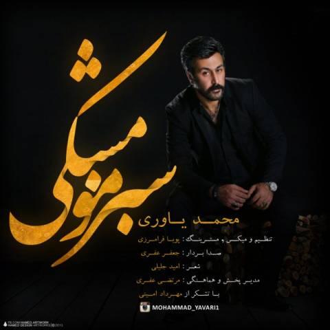 mohammad-yavari-sabze-moo-meshki