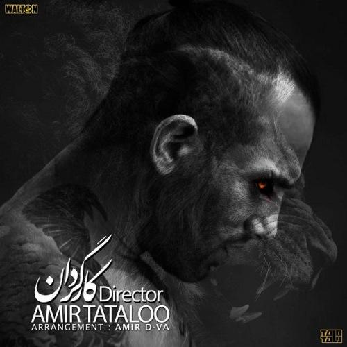 Amirhossein-Maghsoudloo-Kargardan_امیر-مقصودلو-کارگردان