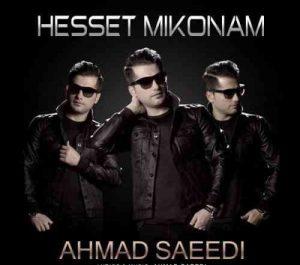Ahmad Saeedi Hesset Mikonam 300x265 دانلود آهنگ احمد سعیدی حست میکنم