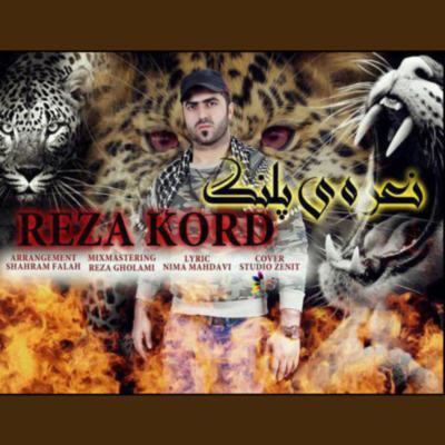 Reza Kord Nareye Palang نعره پلنگ رضا کرد دانلود آهنگ شمالی نعره پلنگ رضا کرد