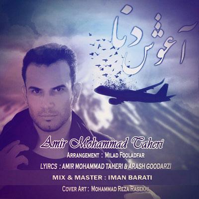 امیرمحمد-طاهری_آغوش-دنا