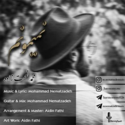دانلود آهنگ محمد نعمت زاده نمیمونم