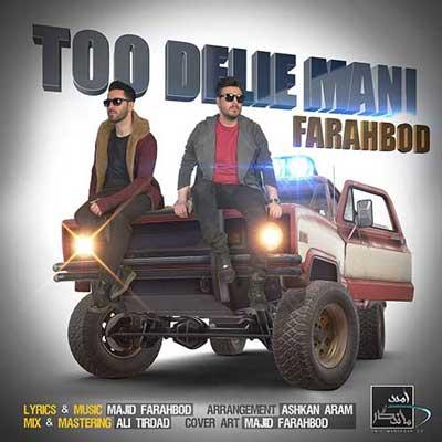Farahbod-Too-Delie-Mani_دانلود-آهنگ-جدید-فرهبد-تو-دلی-منی