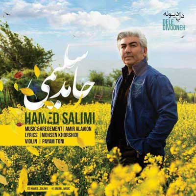 Hamed-Salimi-Dele-Divooneh_حامد-سلیمی