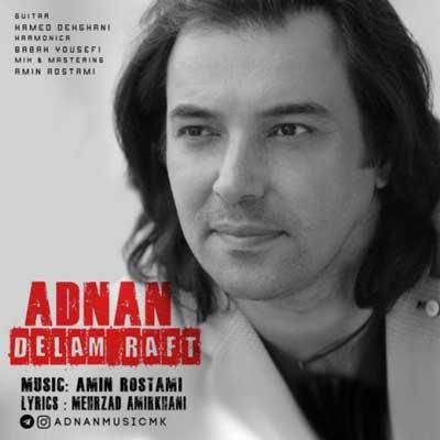 adnan-delam-raft
