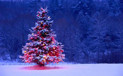 درخت کریسمس 400x250 دانلود آهنگ شاد کریسمس