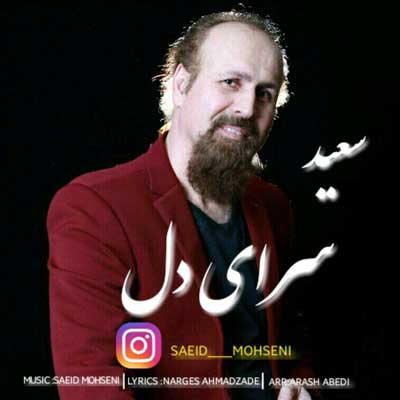 دانلود آهنگ جدید سعید محسنی سرای دل