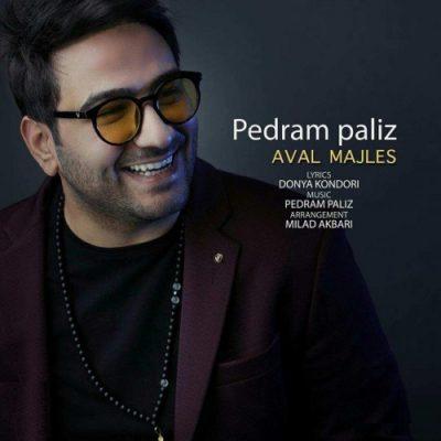 Pedram Paliz Aval Majles mp3 پدارم پالیز اول مجلس 400x400 دانلود آهنگ جدید پدرام پالیز اول مجلس