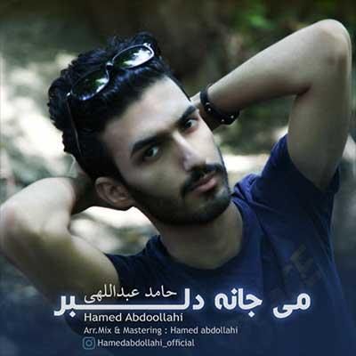 Music Hamed Abdollahi Mi Jane Delbar