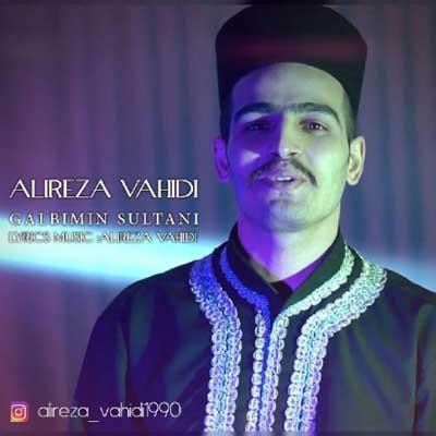 Music Torki Alireza Vahidi Galbimin Sultani