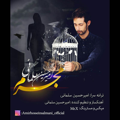 AmirHossein-Salmani-Mojrem